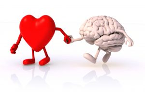 heart and brain work together